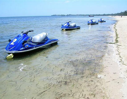 beach holiday activities in Mombasa