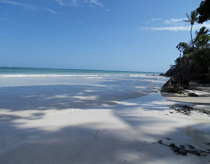 What to see on a diani beach holiday