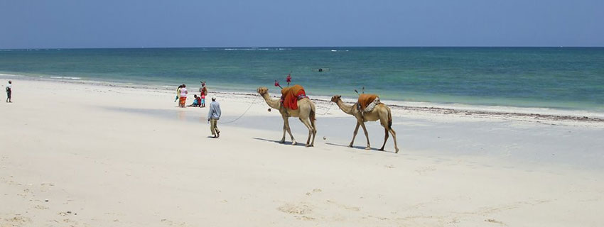 Beach Holiday destinations in Kenya, Diani beach