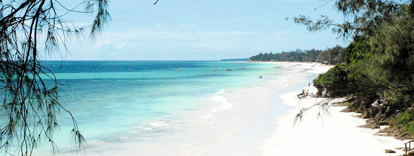 Beach holidays in Diani