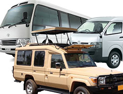 Car Hire and Rentals in Africa