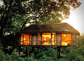 Hotels in Lake Manyara