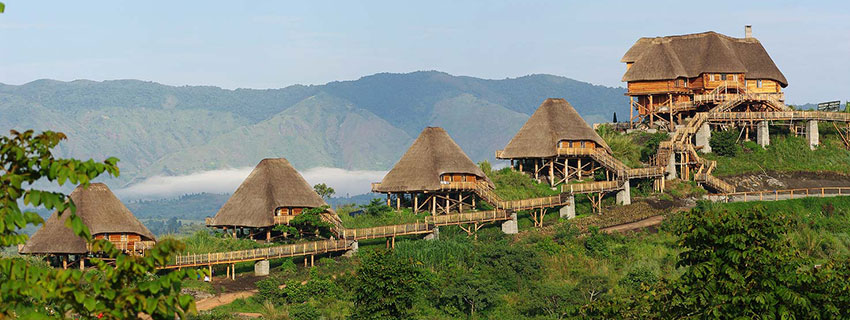 accommodation in Kibale national park