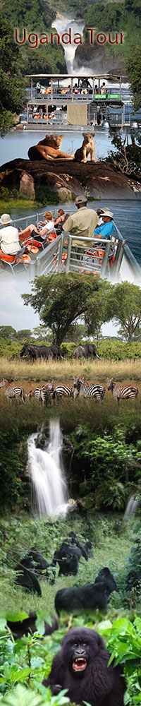 Safari holiday and tour of Uganda