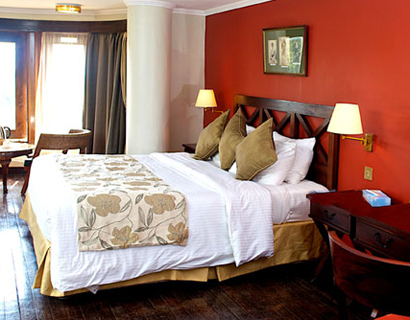 hotels in Nyeri, treetop lodge