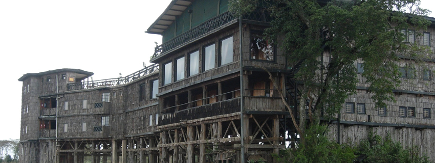 hotels in Kenya, treetop lodge