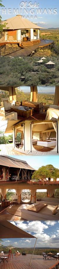Safari Hotels in Masai Mara,Ol Seki Camp