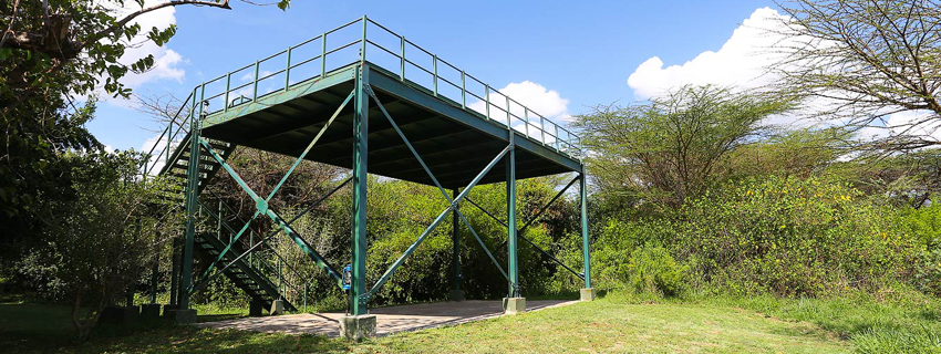 Mara Camp, Ilkeliani viewing area