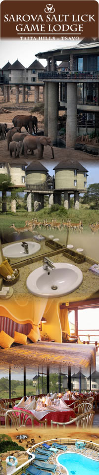 Tsavo national park, Three Days safari holiday