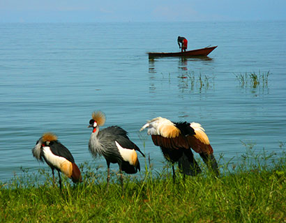 Lake Victoria holiday tour
