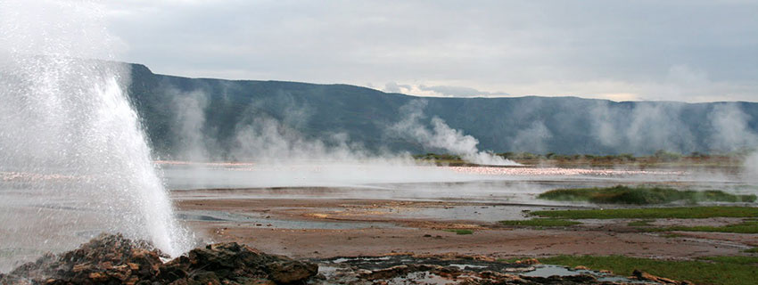 holiday destinations in Kenya, Lake Bogoria