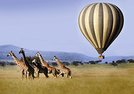 Family Holidays in Tanzania
