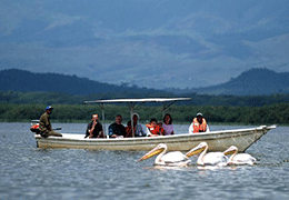 Day Trip to Lake Naivasha