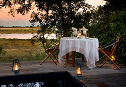 Safari Wedding and Beach Honeymoon