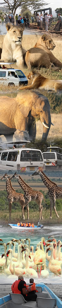 Kenyan safari Holidays